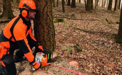 Pelatihan Operator Chainsaw
